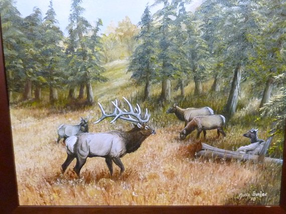Original Oil painting - Elk painting - Wildlife Art - 16x20 - animal art - framed painting - Julie Butler Creations