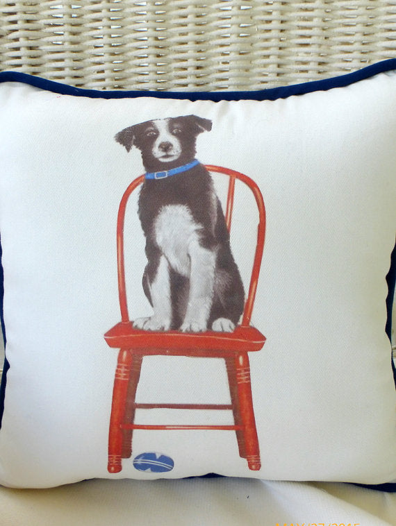 Accent Pillow - Decorative dog Pillow - border collie - animal pillow - boys room decor  dog lover - Julie Butler Creations