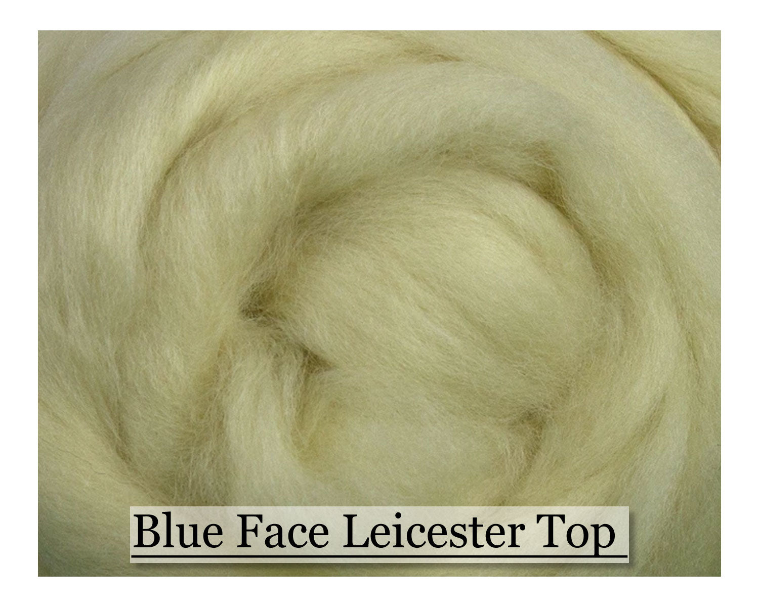 Blue Faced Leicester Top - 1, 2 or 4 oz size