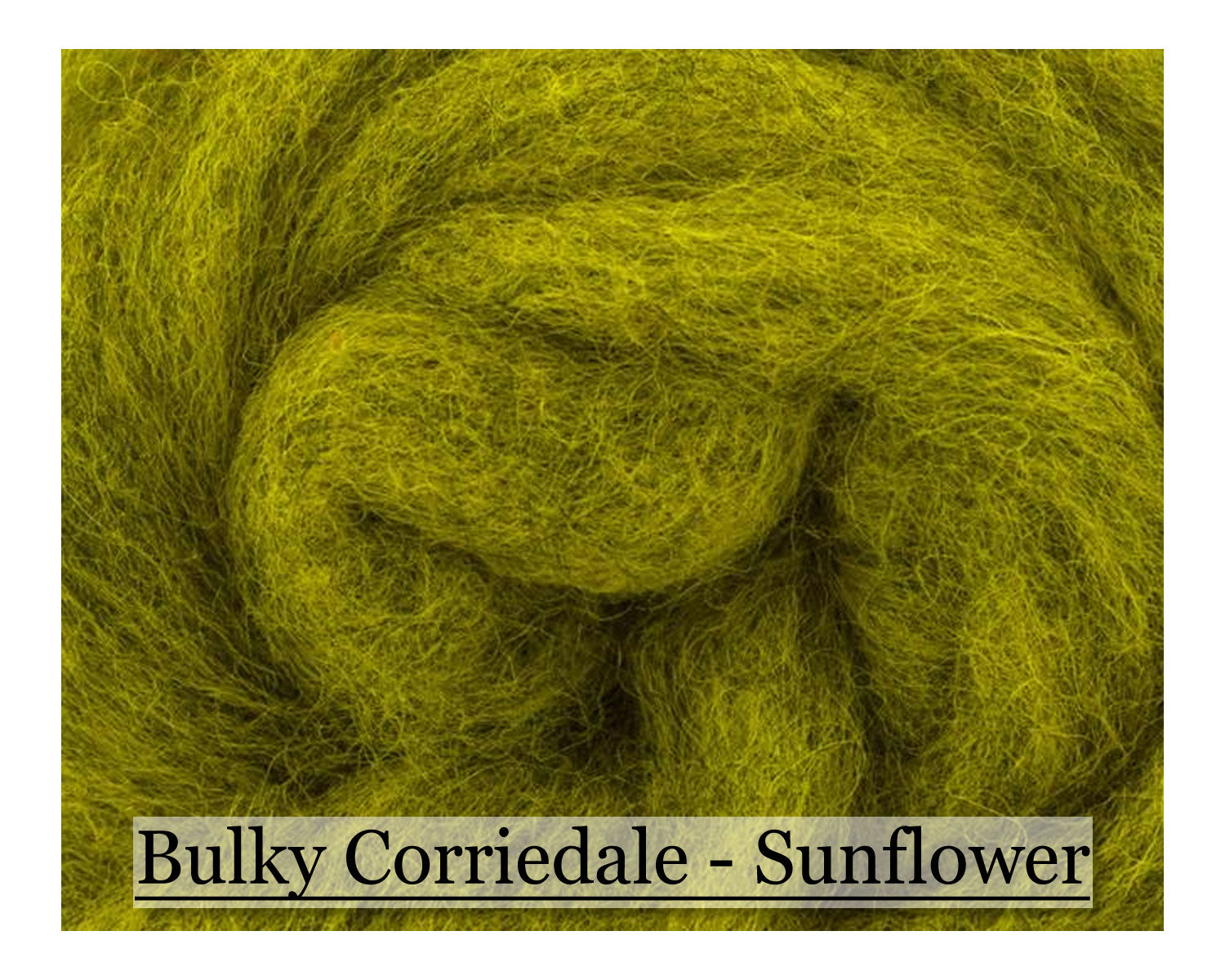 Cartwheel - Bulky Corriedale Wool - 16oz