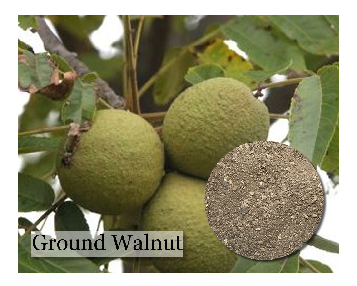 Walnut Hull - Ground - 8 oz