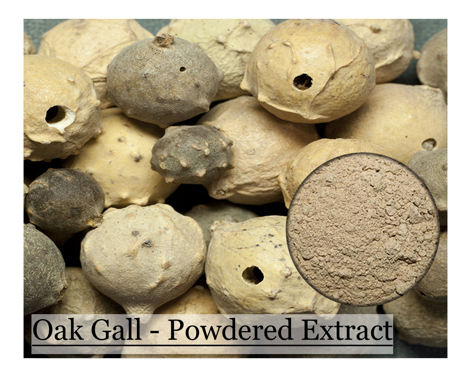Oak Gall - 16 oz - Wholesale
