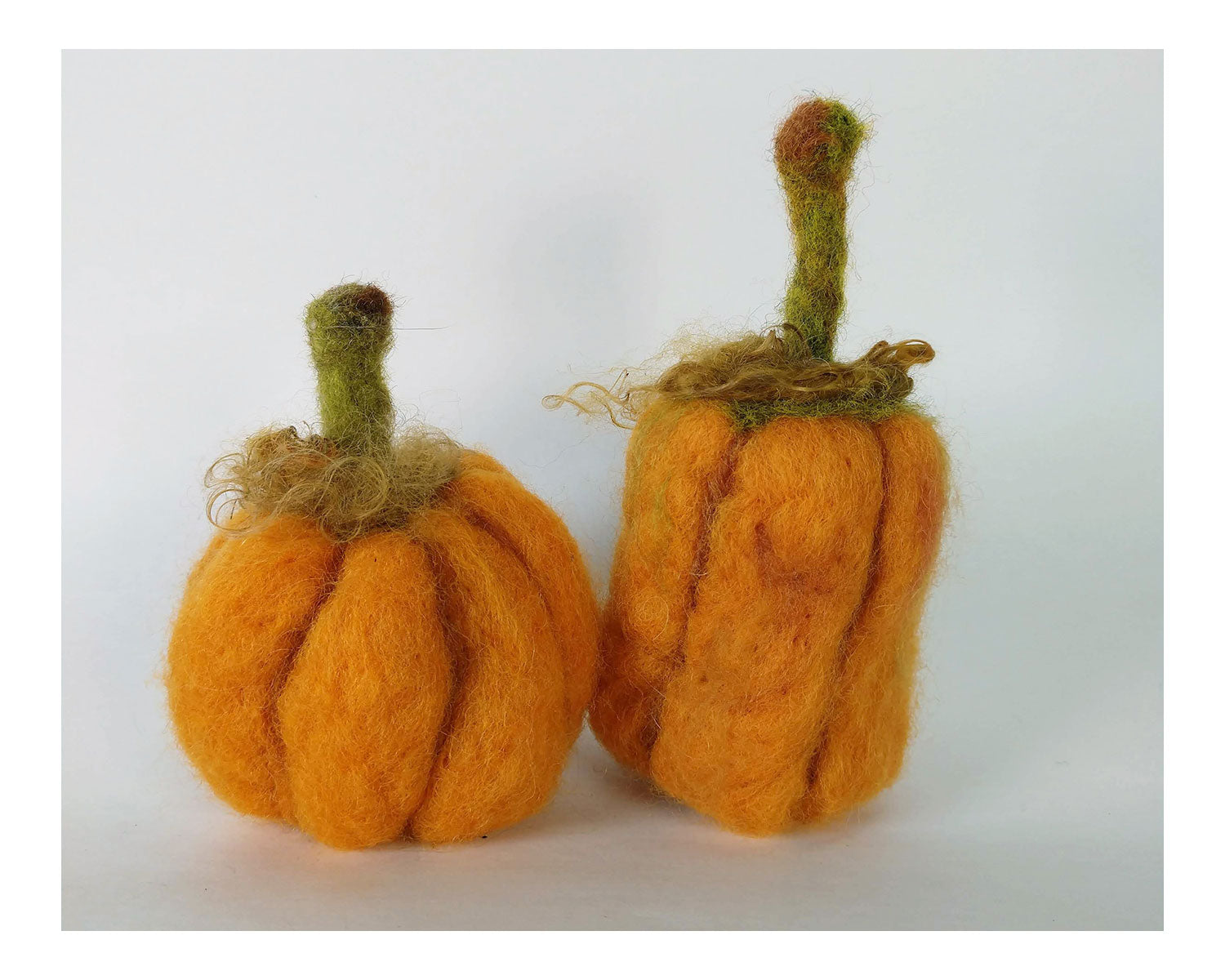 Orange Pumpkin Needle Felting Kit