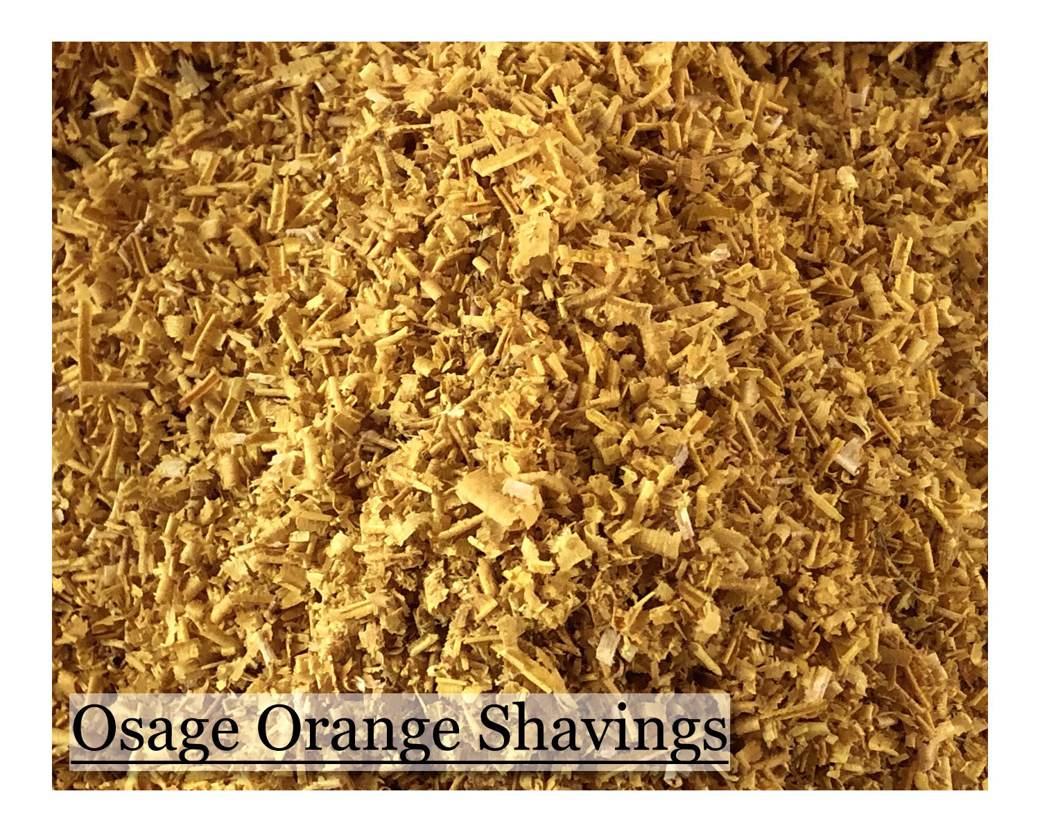 Osage Orange Shavings - 2oz (57g)