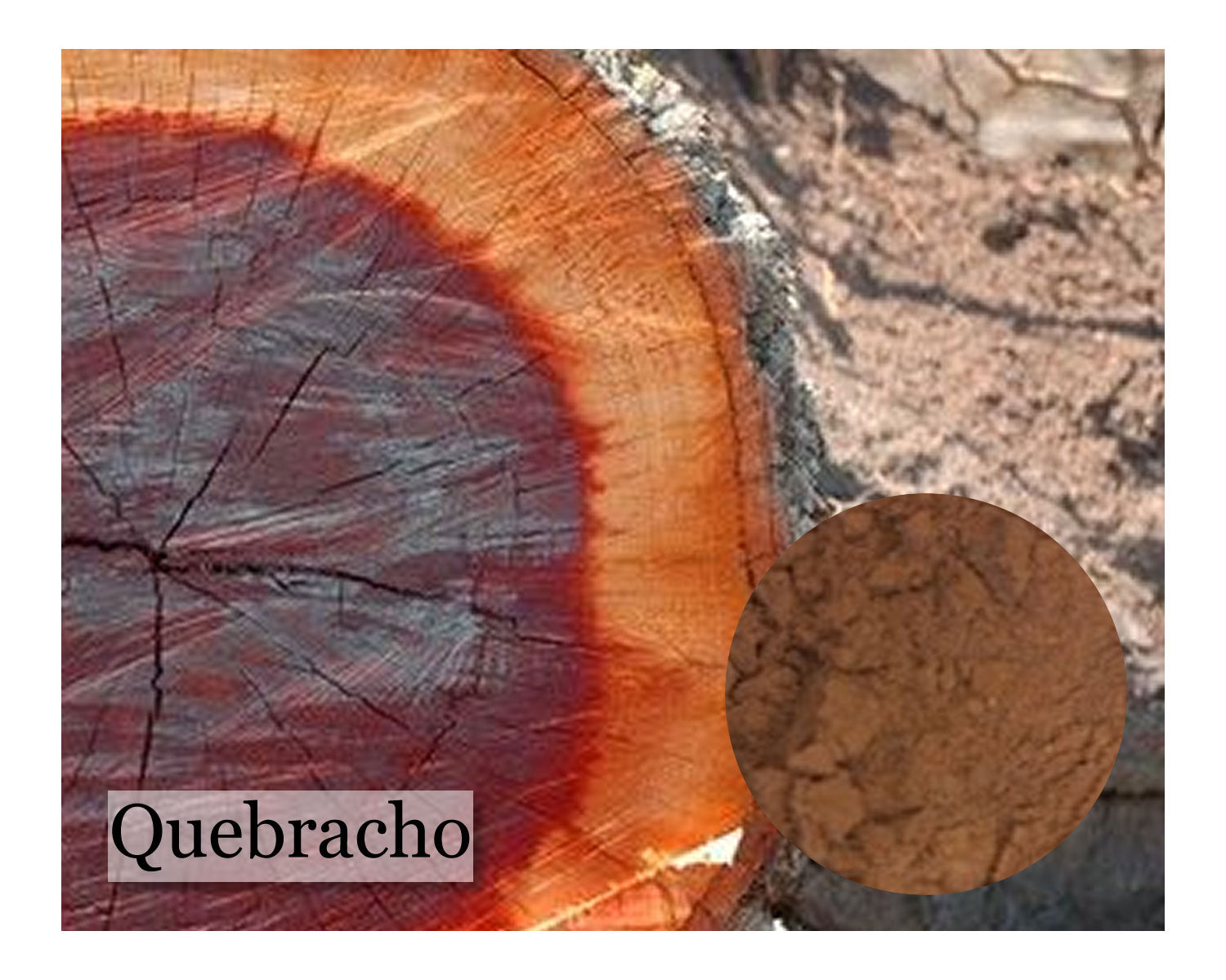 Quebracho Extract - 8oz