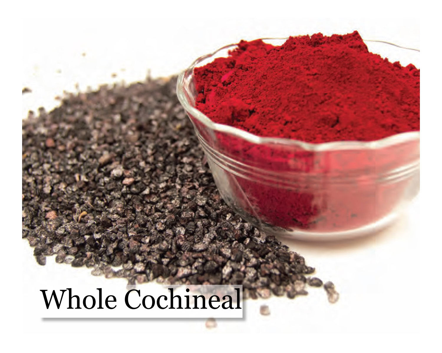 Cochineal - Whole - 16oz - Wholesale