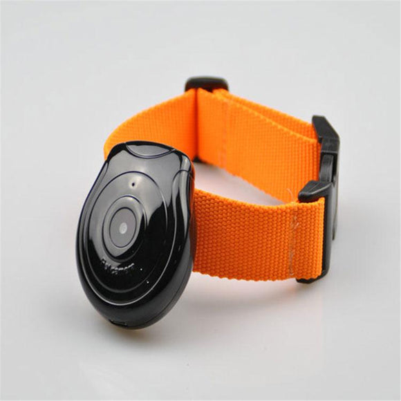Pet Mini Cam