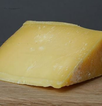 Galen's Good Old Gouda