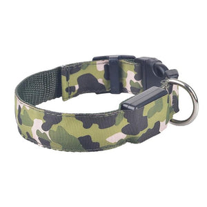 Light Up Night Safety Dog Collars - Elliott's Outdoor Store