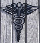 Caduceus Medical Nurse Symbol Metal Wall Art Flat Black