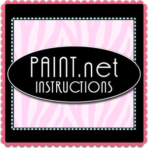 Paint.net Instructions