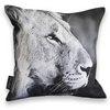 Cushion Cover SC BW 09 Lion