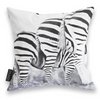 Cushion Cover SC BW 04 Zebra