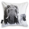 Cushion Cover SC BW 12 African Elephant
