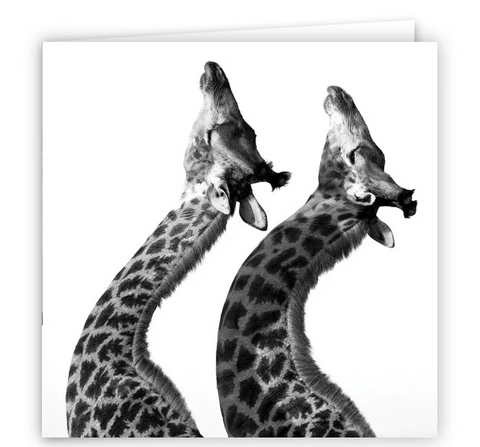 Large Greeting Card GC139 Giraffe