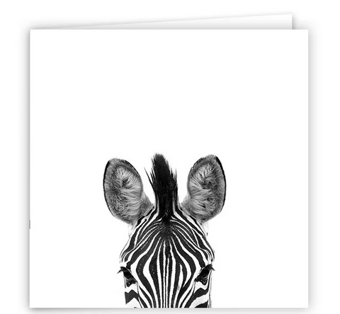Large Greeting Card GC130 Zebra