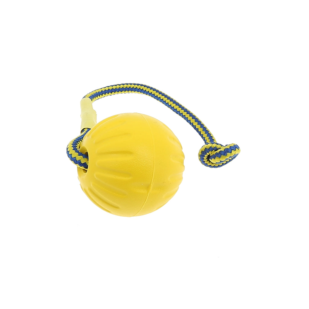 Durafoam Swing N Fling Fetch Ball - Kit4dogs