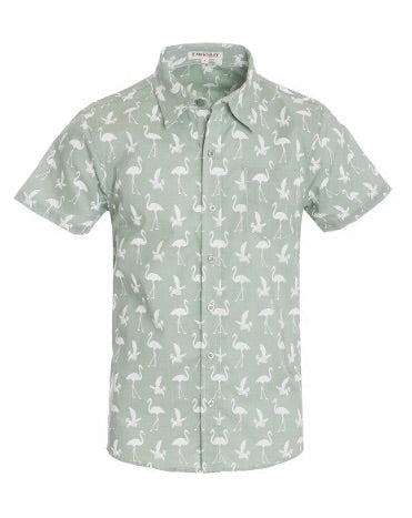 """Aruba"" Men's Shirt Green"