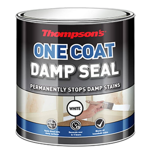 Thompsons One Coat Damp Seal