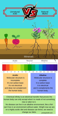 Unnatural VS Natural Plants