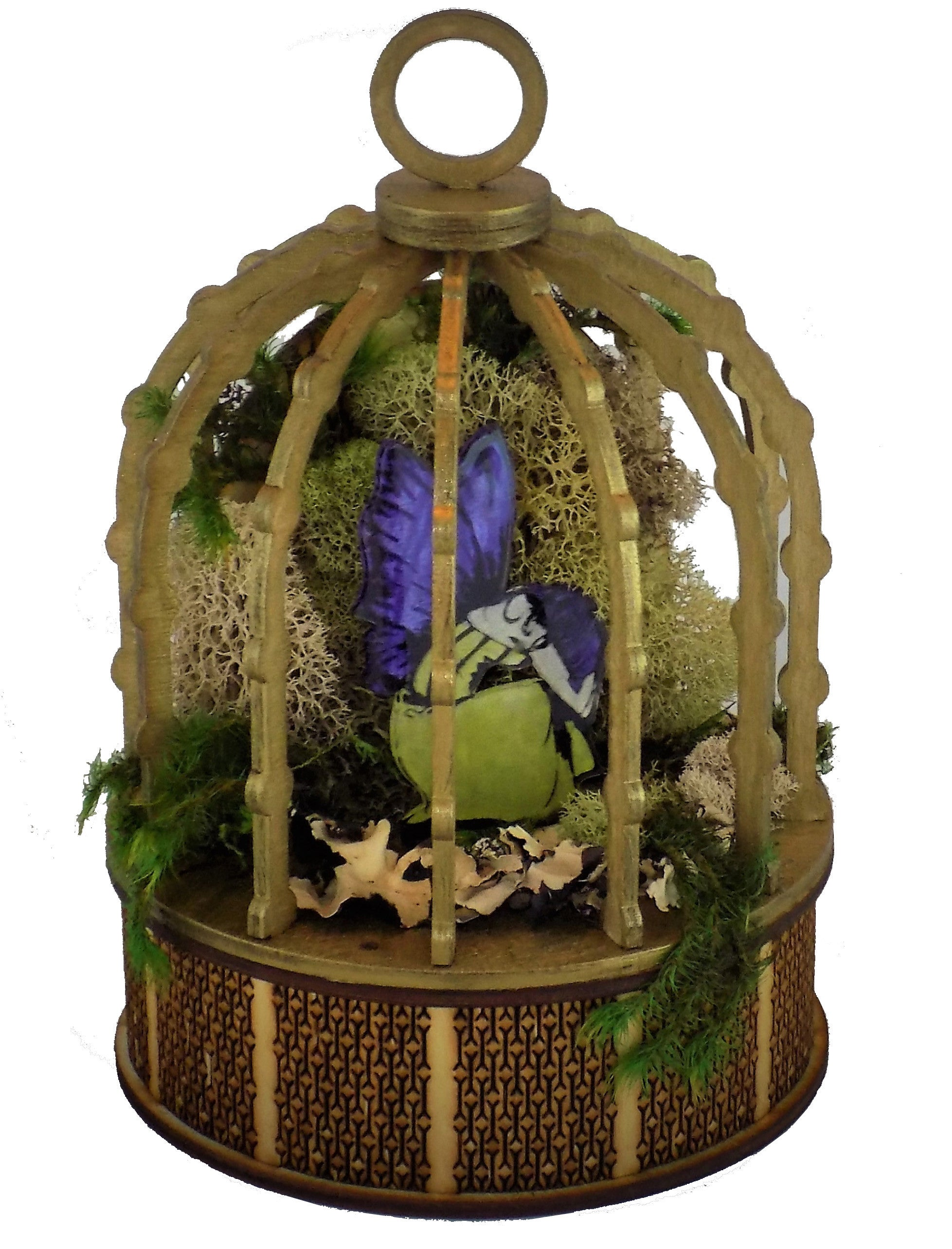 Caged Faerie Kit