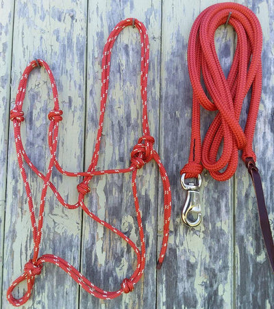 2 Noseband Knot 6mm Rope Halter & 12ft Lead 12mm with Loop/Bull Snap Made in Australia