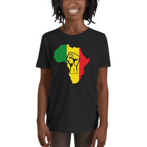 This black short-sleeved youth Tee from Natty Wear is made of 100% soft jersey cotton*. The front print portrays a map of Africa in the Rastafarian colors (red, gold/yellow, green), which are also known as the Pan-African colors, with black color used for the outlines of a raised fist which overlays the image