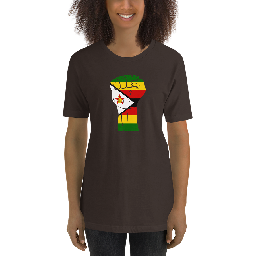RAISED FIST 'ZIMBABWE' — Women's Premium T-shirt