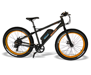Multi-Color Electric Bike Online