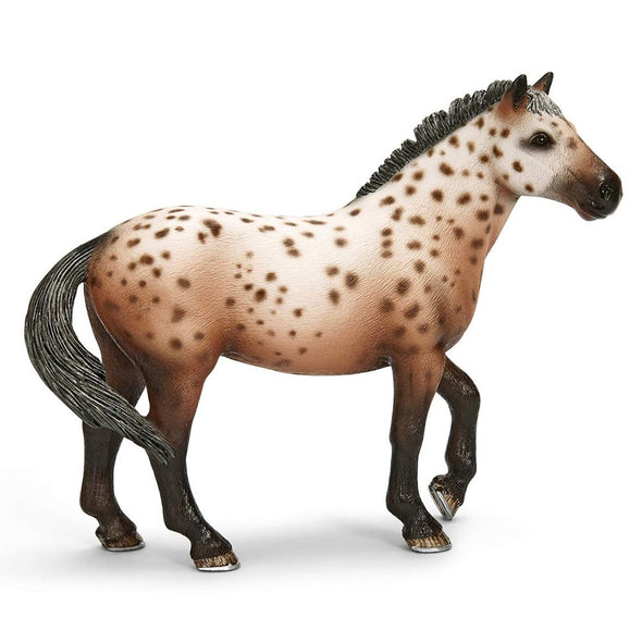 Schleich 13689 Knabstrupper Stallion