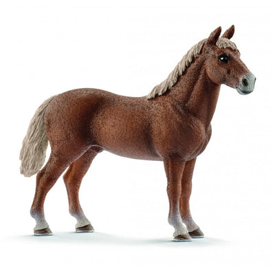 Schleich 13869 Morgan Horse Stallion