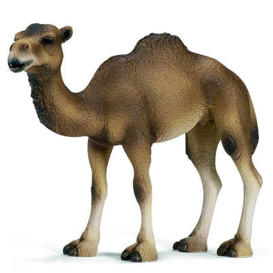 Schleich 14355 Dromedary Mare Camel