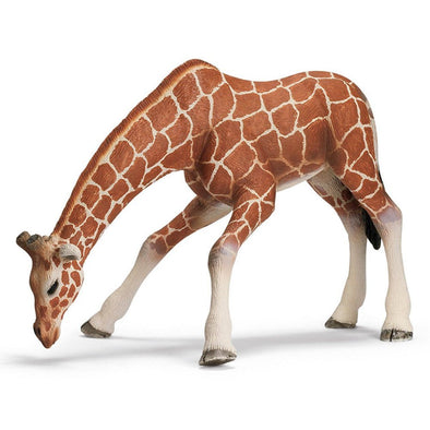Schleich 14390 Giraffe Female, drinking