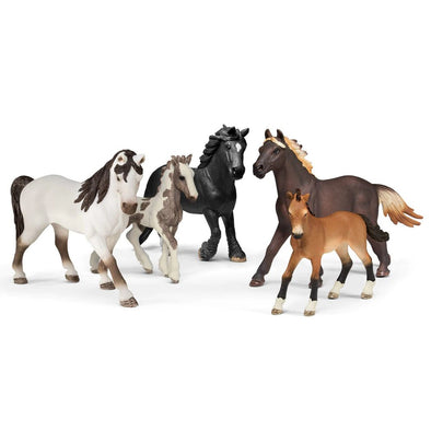 Schleich 72113 5 Horse Collectors Pack.