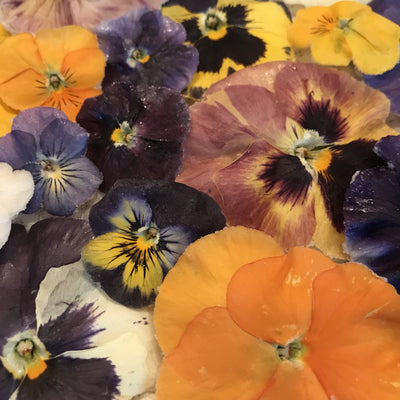 Crystalized Edible Pansies/Violas