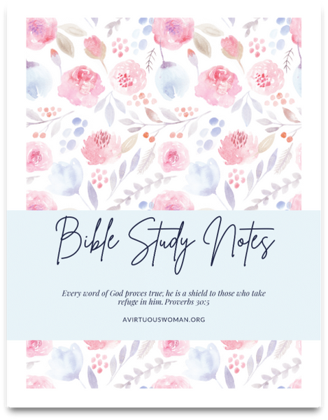 Bible and Prayer Journal | Binder | 38 Pages