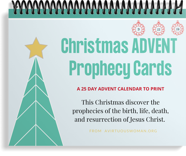 Prophecy Advent Scripture Cards | 25 Day Advent Calendar