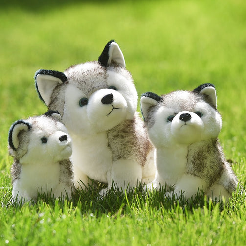 Simulation Cute Husky Dog Soft Toys - Shopaholics