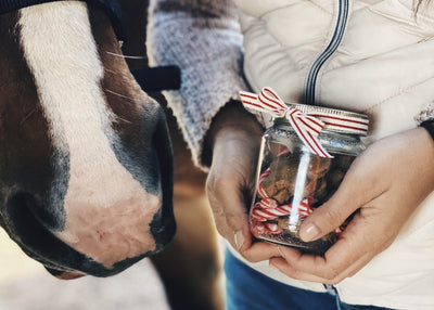Holiday Horse Treats
