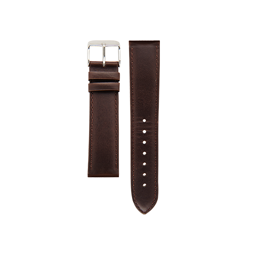 Brown Band Steel Buckle