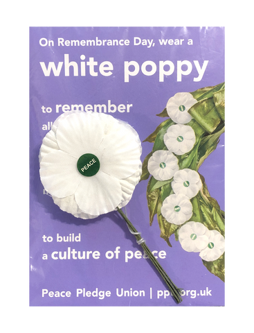 White Poppies 5 Pack