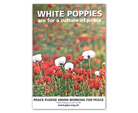 White Poppies (A3 Poster)
