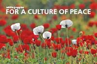 For a Culture of Peace (Postcards x5)