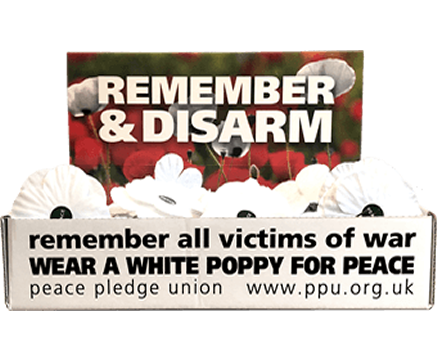 White Poppies Display Box of 100