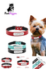 Image of Personalized Leather Dog Collar
