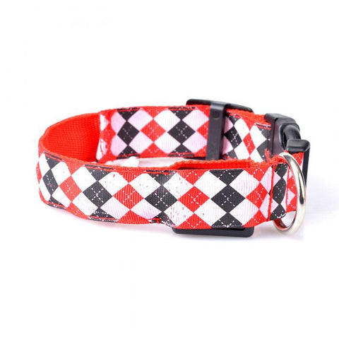 Dogs LED Luminous Collar, - PlushDoggies
