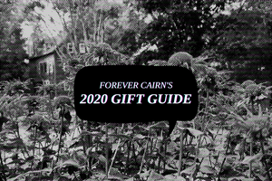 Forever Cairn's 2020 Gift Guide