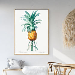 Ananas | Shadow Framed Art