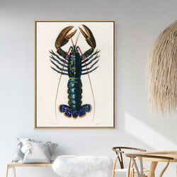 Vintage Blue Lobster | Shadow Framed Art