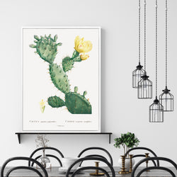 Flowering Cactus | Shadow Framed Art